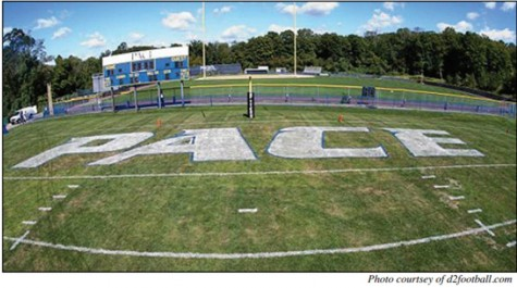 Artificial Turf Causes Discussion Over Player Injuries