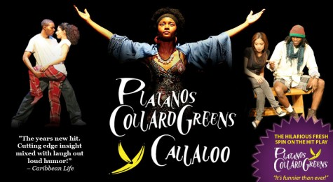 Omega Phi Beta Hosts Platanos Y Collard Greens