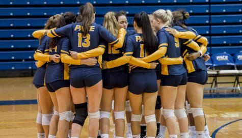 Pace Volleyball Shining as it Nears the Postseason