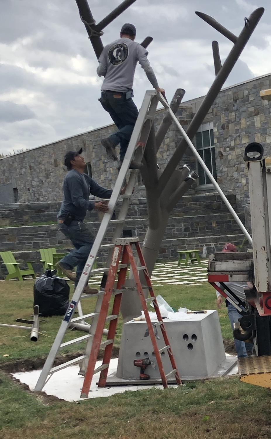 The beginning of the installation of Pace's first-ever solar tree, on Kessel lawn