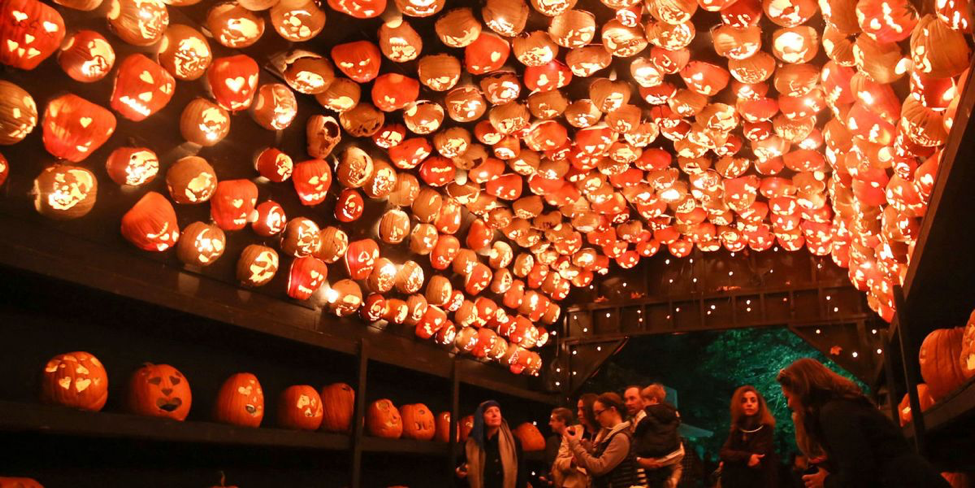 Great Jack O'Lantern Blaze in Van Cortlandt