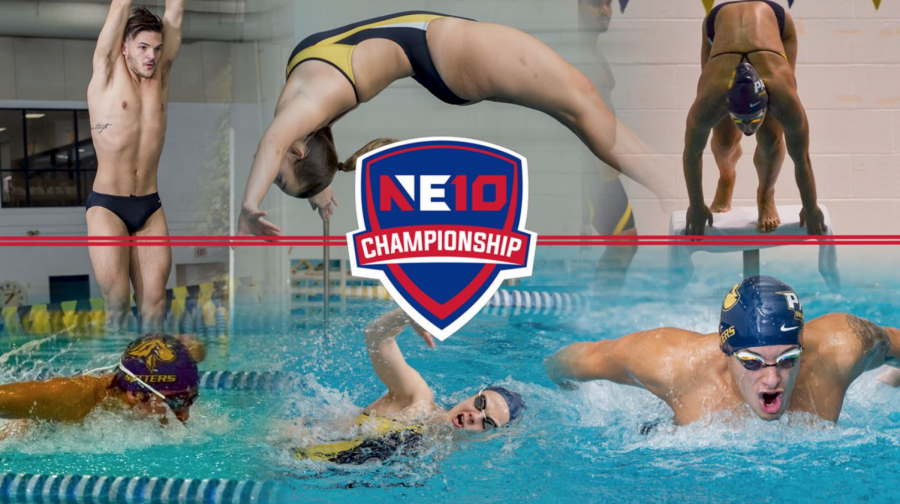 Pace+swim+and+dive+prepare+for+the+NE-10+Championship.