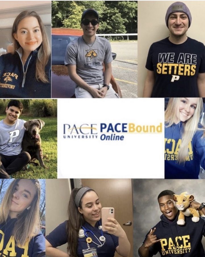 Since Pace's annual accepted student event, Pace Bound, could not take place in person this year, the university decided to hold it online via Zoom.
