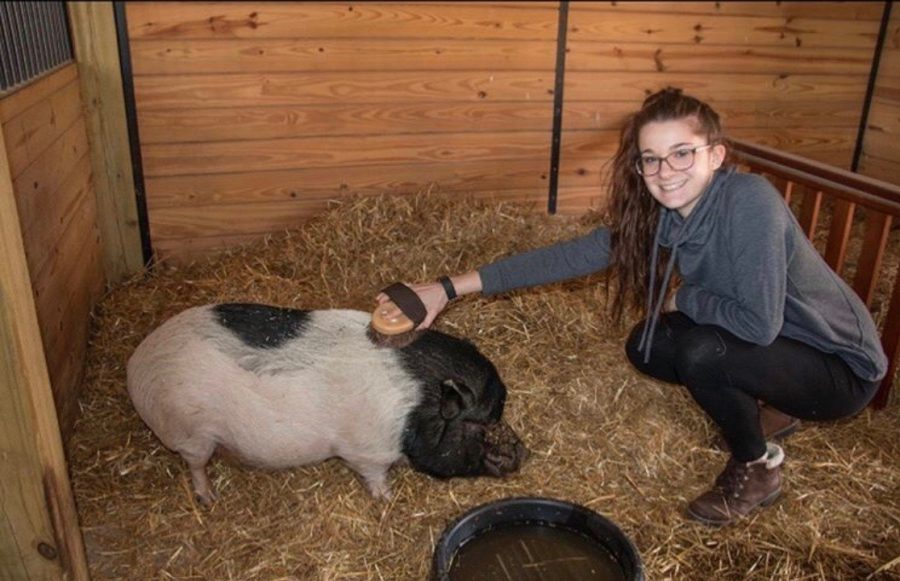 Taylor Ganis, student keeper and president of the nature club, has been vocal about saving the animals on social media.
