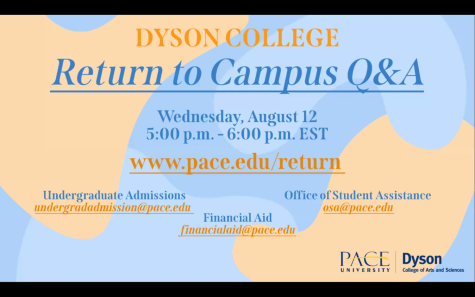 Dyson hosts Zoom session with Students and Parents