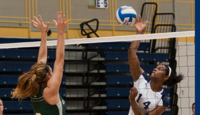 Setters Volleyball Falls to Adelphi