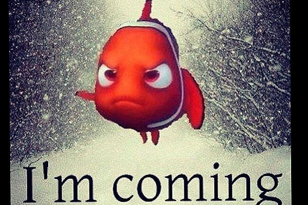 Nemo: Another Chart Topping Storm for the East Coast