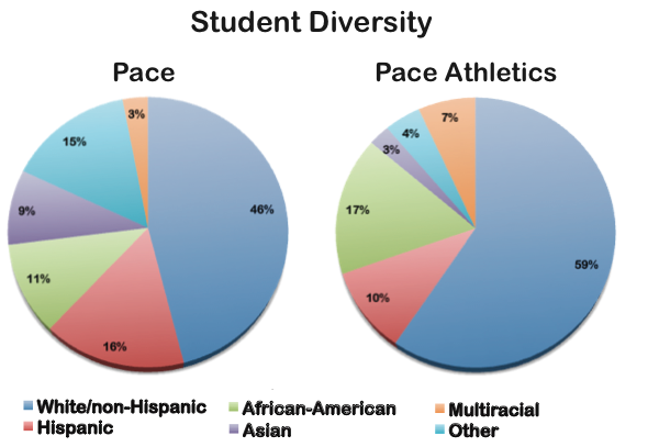 Are sports stereotypes represented at Pace?