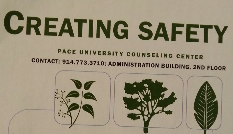 Pace University Counseling Center Offers New Group Discussions