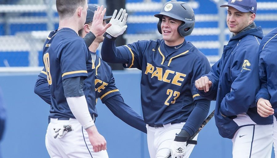 Senior catcher Michael Gulino (23) is one of seven active seniors expected to lead the new look Setters team. Photo Courtesy of Pace U Athletics.