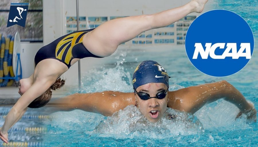 Freshmen Swimming and Diving teammates  Annabel Keppel-Palmer and Sophia Howard may be known for their performances in the pool, but the two were deeply devoted to unique sports before coming to Pace. Photo Courtesy of Pace U Athletics.