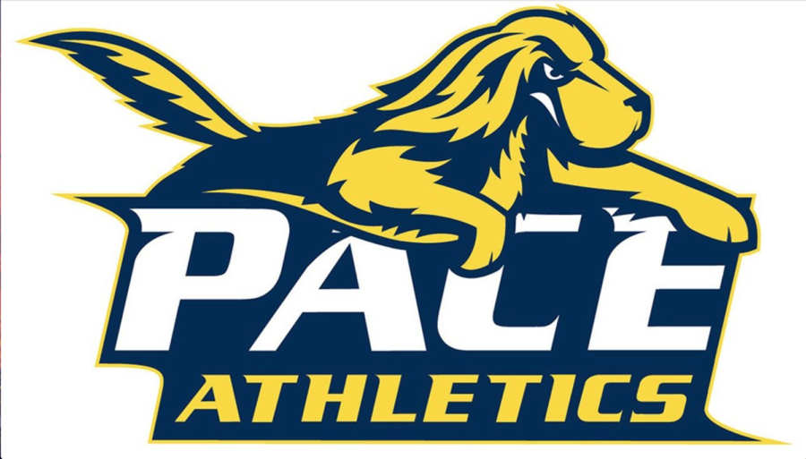 Pace Athletics is joining the university's mentoring program, and hopes to connect past student-athletes with current ones.