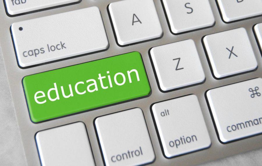 Professors adapt to new LMS: Classes